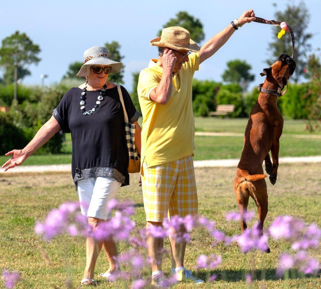residence toscana mare per animali - Residenza Principina
